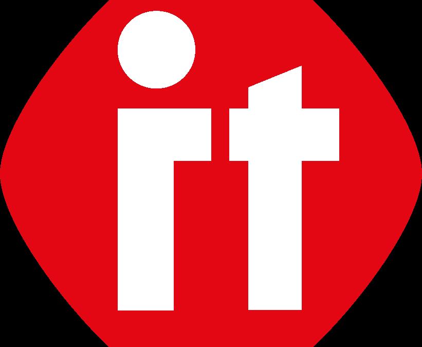 Netzleiter IT Systemhaus Logo edv support