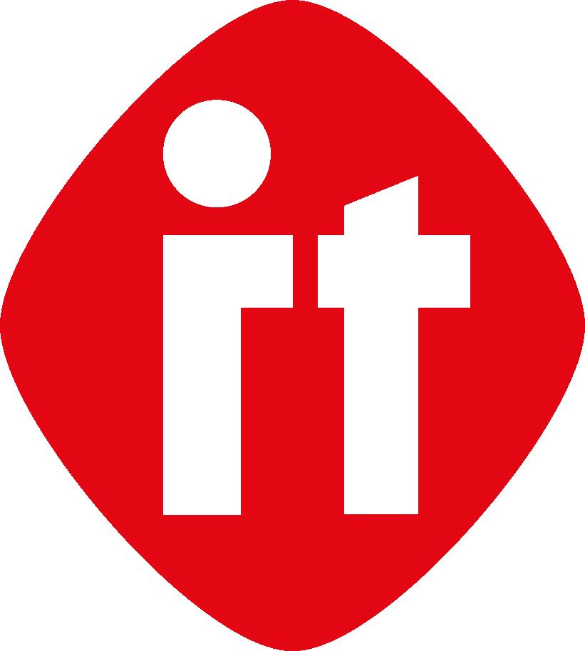 Netzleiter IT Logo